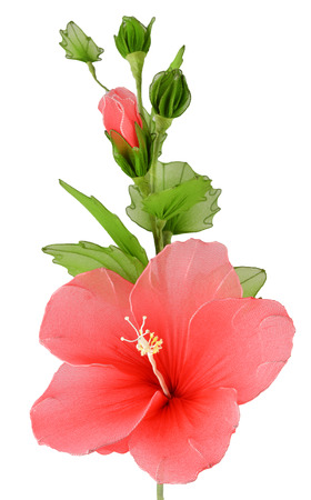 Artificial hibiscus flowers photo