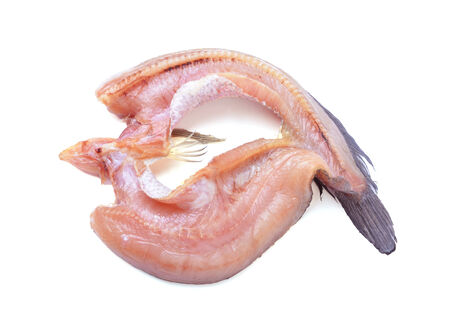 snakehead: Common snakehead, Chevron snakehead, Striped snakehead(Channa striata)
