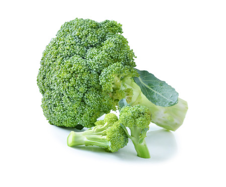 broccoli still life on a white background photo