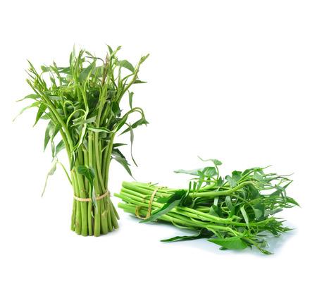 green vegetable: Morning glory green vegetable