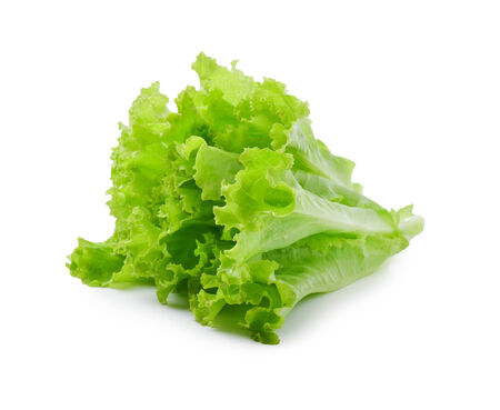 fresh  lettuce leaves isolated on white photo