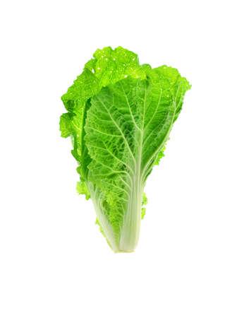 nonfat: Fresh Lettuce  isolated on white background