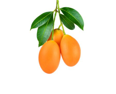 ciruela: dulce de ciruela Marian fruta tailandesa aislada en el fondo blanco