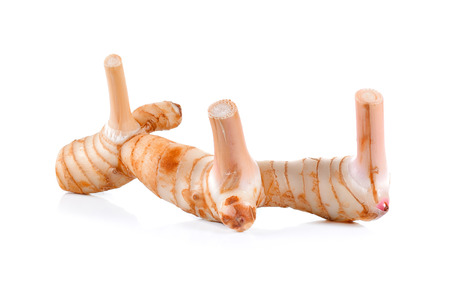galangal: fresh galangal on over white background Stock Photo