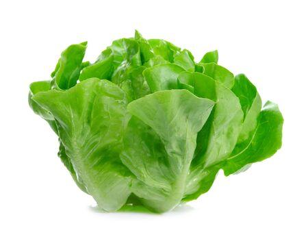 leaf vegetable: Lettuce Salad Isolated On White