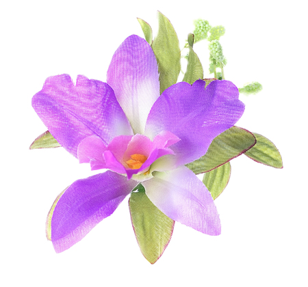 Artificial Purple Cattleya Orchid isolated on a white background. Stock Photo