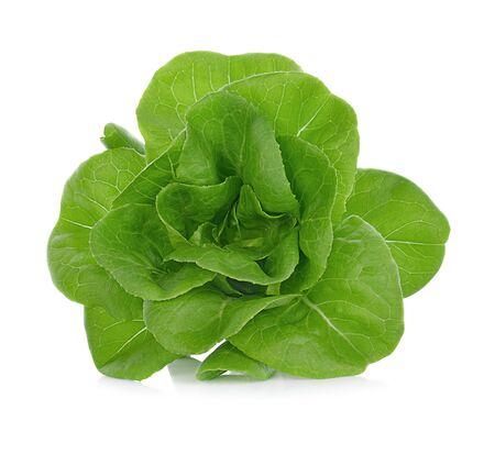 Lettuce Salad Isolated On White Background. Stock Photo
