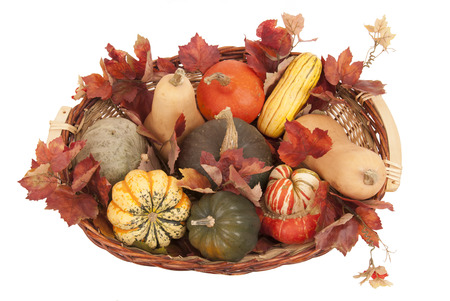 Basket of colorful fall harvest squash Stock Photo