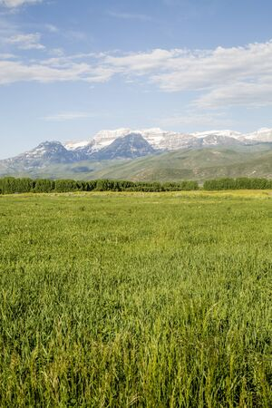 snow capped mountain: High snow capped mountain valley hay field Stock Photo