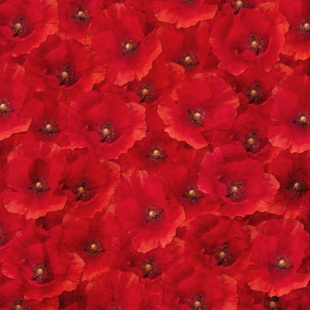 texturized: Composite photographs of red poppies seen from above as a texturized background