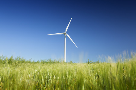 Wind turbine in the middle of a green wheat field photo