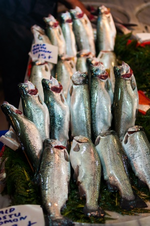Fish on market in Istanbul, Turkey photo