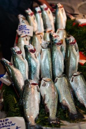 Fish on market in Istanbul, Turkey photo
