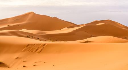 desierto del sahara: Erg Chebbi dunas de arena del desierto de Marruecos