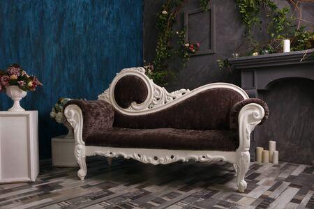 Modern Living Room vintage sofa and furniture, interior design