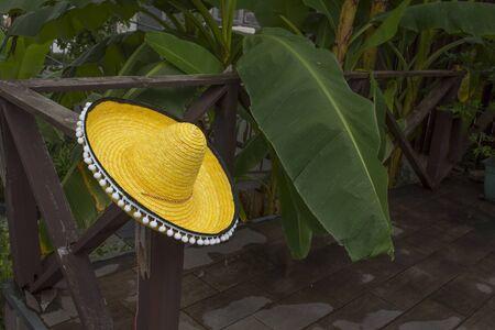 yellow sombrero on a background of palm trees Фото со стока