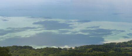 Seaside plants. Meditarian Sea landscape. Beatiful sea view. Фото со стока