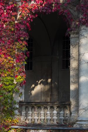Stone balcony entrance wall with red ivy. autumn colors. building with Gothic style