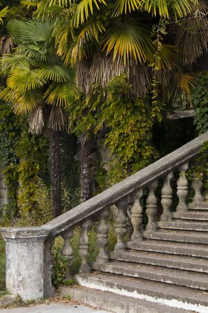 Art staircase construction. Classic design and architecture. A picturesque landscape. Stone staircase Фото со стока
