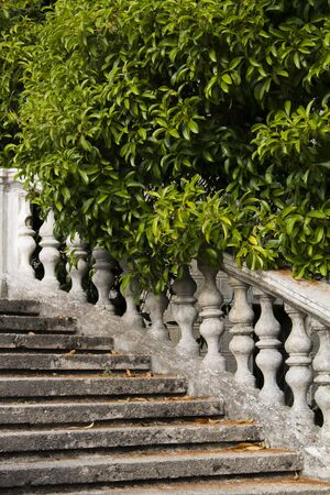 Fragment Old stone balustrade of railing background of green trees. Classic design and architecture. A picturesque landscape.