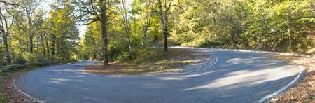Open Asphalt Road Path Walkway Through Autumn Forest In Sunny Day. Panorama Фото со стока