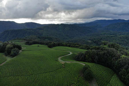 Aerial view over agricultural fields and road. Dark clouds in the sky