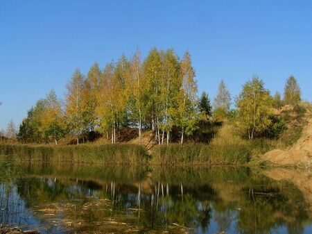 bulrushes: Autumn in Russia Stock Photo