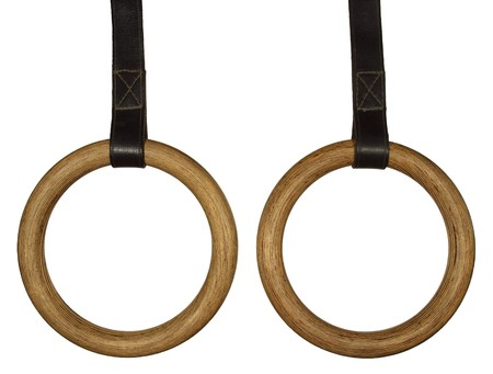 Two gymnastic rings on leather belt brown