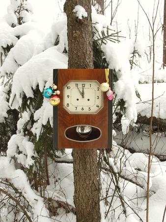Christmas tree on a tree covered with snow. 版權商用圖片