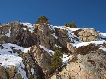 A cliff on a snowy slope against the blue sky with a lone tree on top.