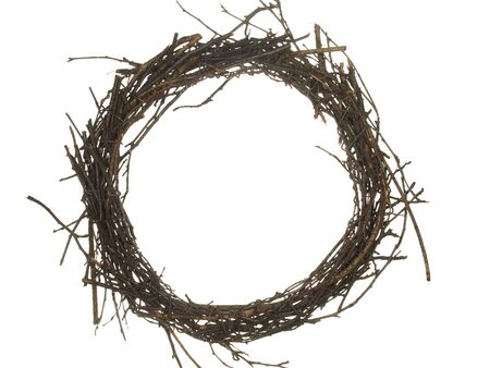 White twigs Stock Photo