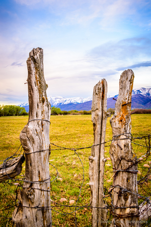 wasatch: Fence in the foreground, and snow capped mountains in the backdrop, in Utah