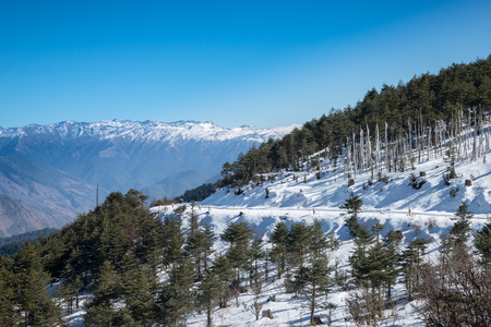 Bhutan: mountain road Bhutan Stock Photo