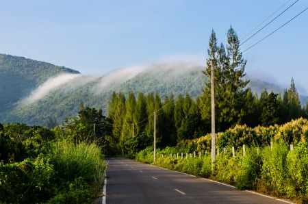curving lines: Road Through fog Covered Mountains