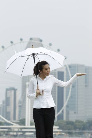 Conceptual stock image of an Asian business woman standing under an Umbrella Stock Photo - 10963428