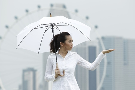 east asian ethnicity: Conceptual stock image of an Asian business woman standing under an Umbrella