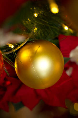 christmas tree ball: Christmas decorations. A Bauble hanging from a tree.