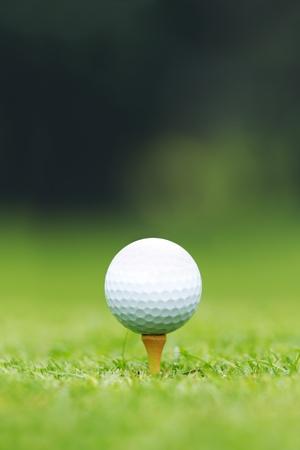 Un gros plan d'une balle de golf assis sur un tee-shirt