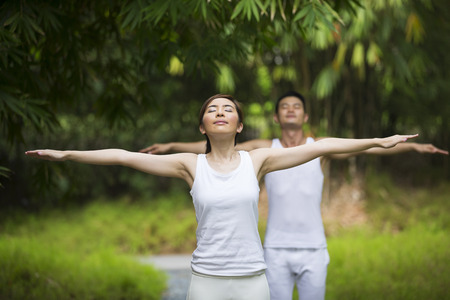 vitality: Asian Man and woman doing Tai Chi in a garden. Healthy lifestyle and relaxation concept. Stock Photo