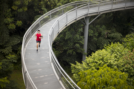 High angle view of a athletic Chinese man jogging on a forest Canopy walkway. Male fitness concept. Banque d'images