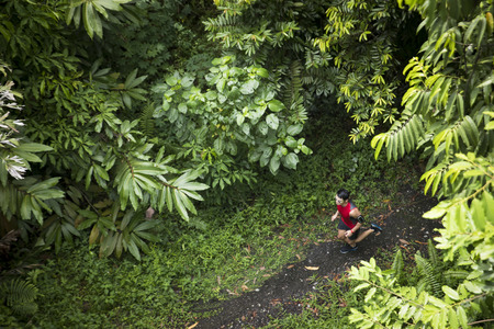 High angle view of a athletic Chinese man jogging on a forest trail. Male fitness concept.