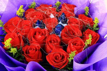 Red And Blue Rose photo