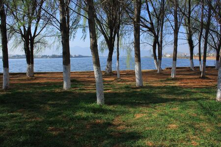 shady: Tranquil lake forest Stock Photo