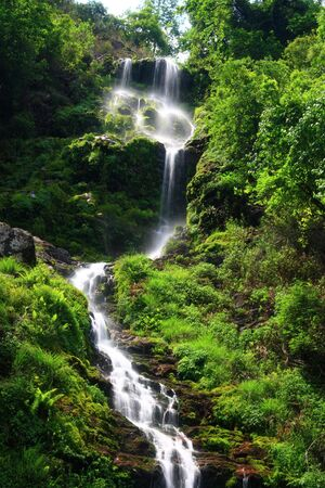 Beautiful streams and waterfalls Stock Photo - 4912404