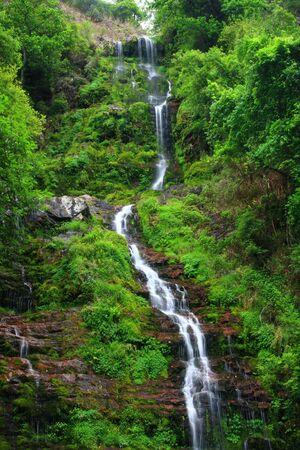 Beautiful streams and waterfalls Stock Photo - 4912409