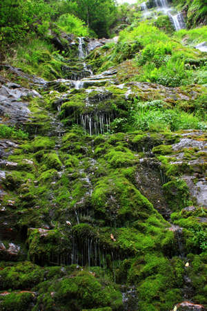 transient: Beautiful streams and waterfalls