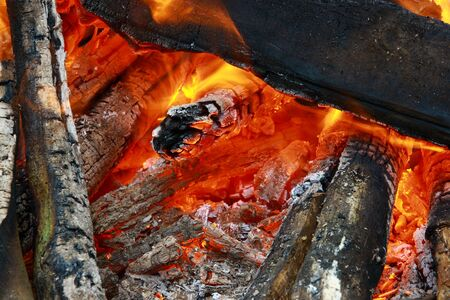 A pile of firewood and barbecue photo