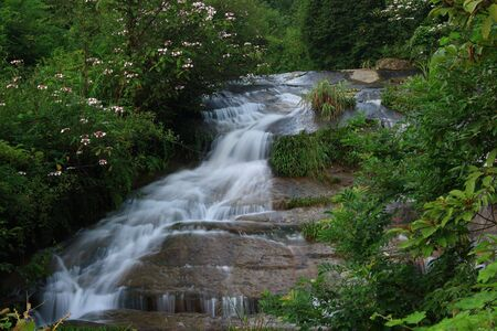 transient: Beautiful streams and waterfalls