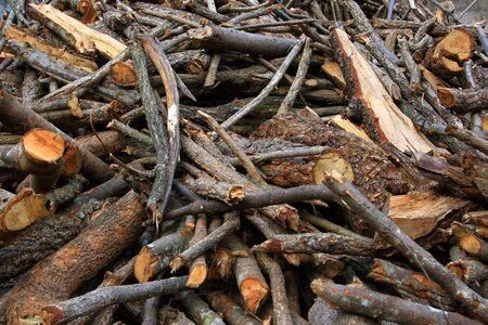 pile of wood storage Stock Photo - 5572363