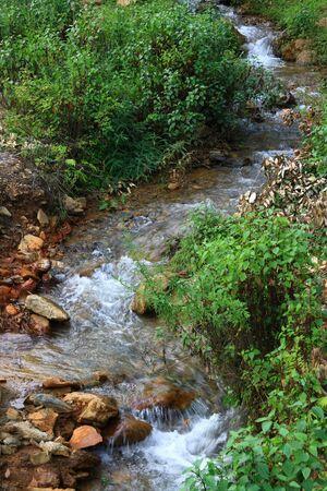 Beauty of the stream photo